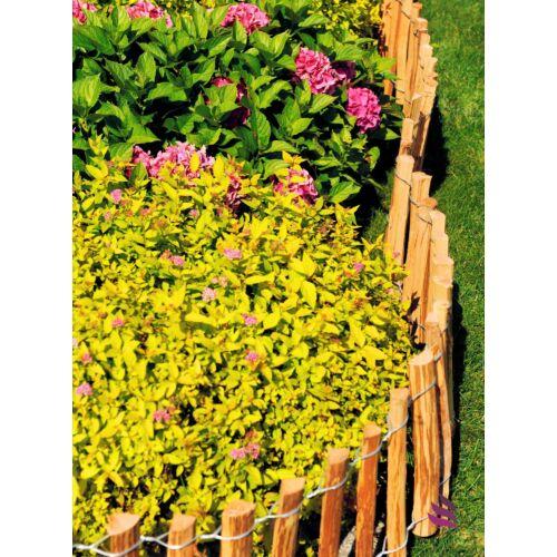 Floranica szegély kerítés, 0,5×5 m